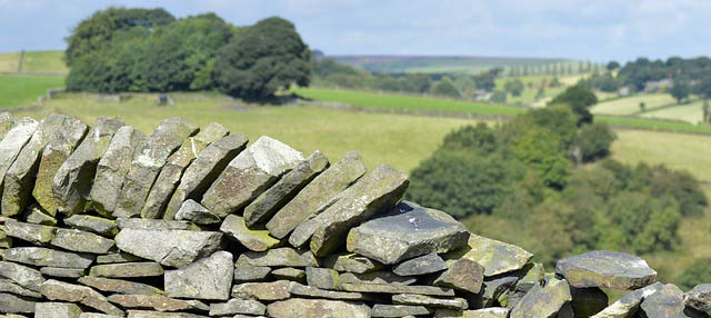stonewall-428016