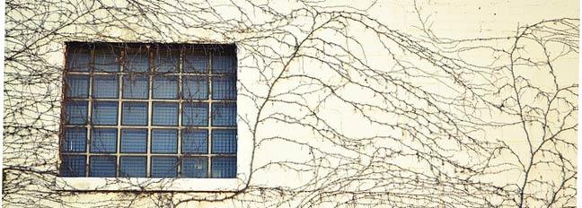window-606597